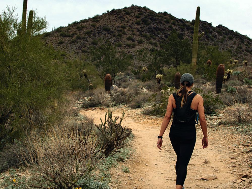 arizona desert hiking